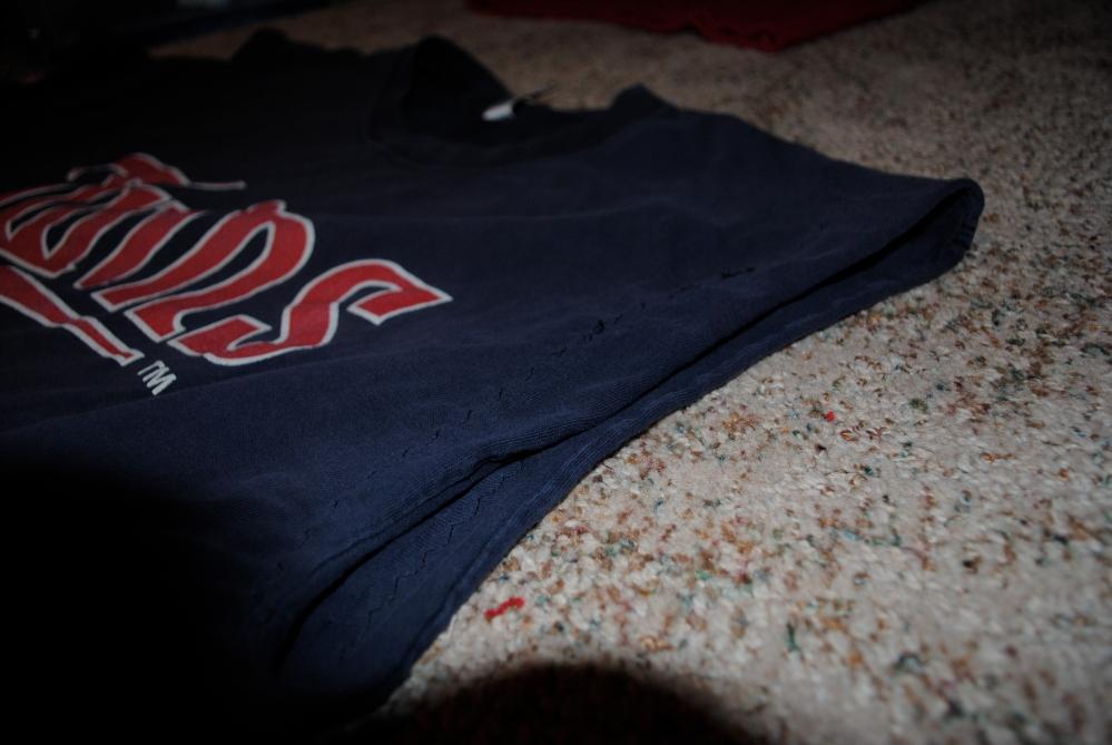 Memory Shirt and Bear (5/6)