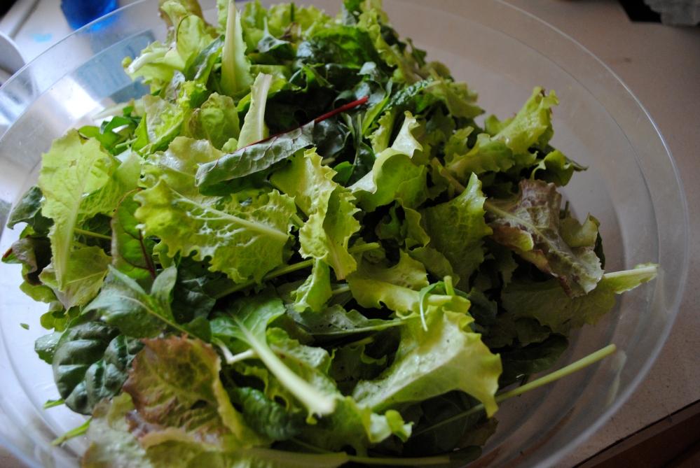 Salad Greens (3/3)
